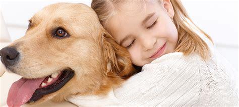 do dogs like hugs do dogs like hugs vetdepot