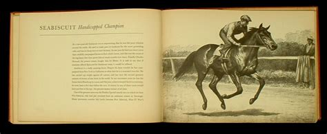 twenty horses books black bay and chestnut a books book