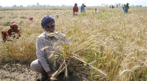 Must Farmers by Punjab Govt Must Take Loan Fund Farm Waiver Says Banks