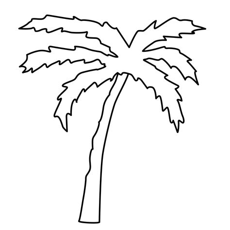Palm Tree Leaves Outline by Palm Tree Leaf Template Clipart Best