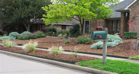 the front yard is mostly mulch with patches of drought tolerant plants like artemisia autumn