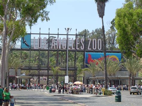 Los Angeles Zoo And Botanical Gardens Los Angeles Ca by Map Where To Catch Pok 233 Mon In Los Angeles Curbed La