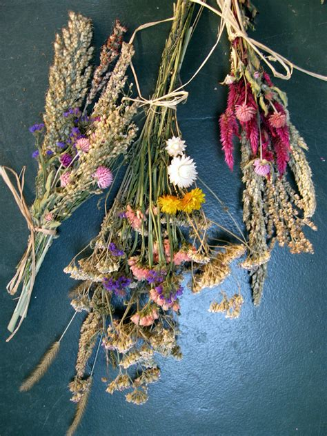 From The Garden Dried Flowers 301 Moved Permanently