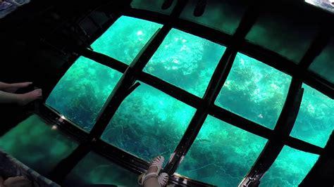 glass bottom boat tours in florida glass bottom boat ride at key largo florida youtube