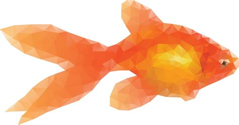 pesce clipart clipart low poly goldfish