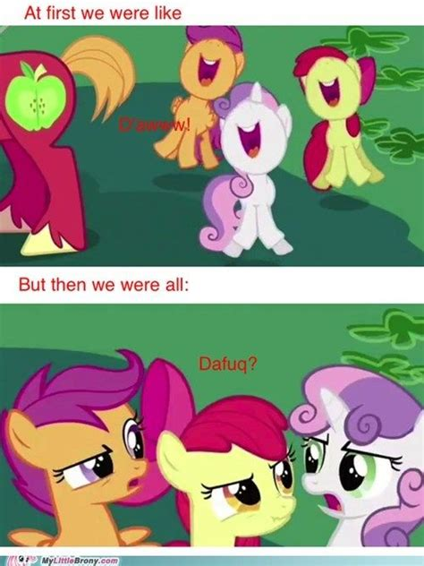 Funny Pony Memes - 17 best images about funny mlp pics on pinterest