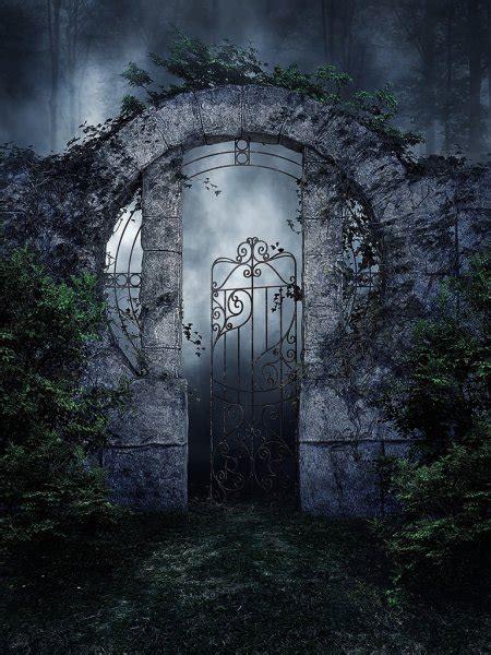 gothic garden gate  vines stock photo