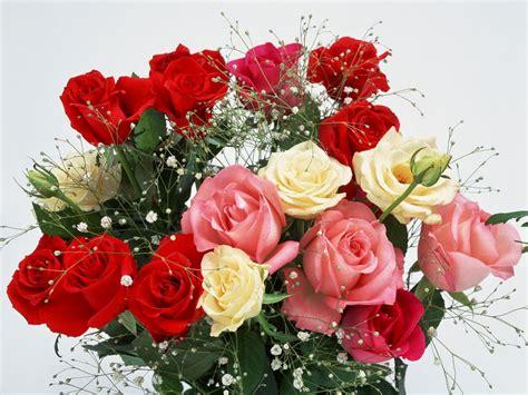 wallpaper bunga dan love kumpulan gambar bunga romantis i love you animasi