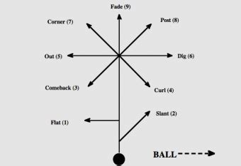 passing tree diagram for football nfl 101 breaking the basics of the route tree