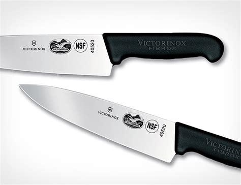 victorinox fibrox 40520 5 best victorinox chef s knives tool box