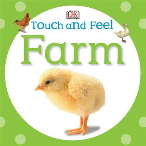 touch and feel farm touch feel chapter books