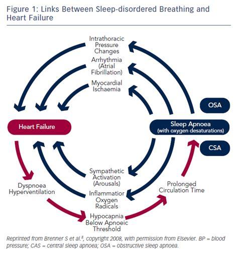 breathing pattern in heart failure sleep disordered breathing in heart failure current