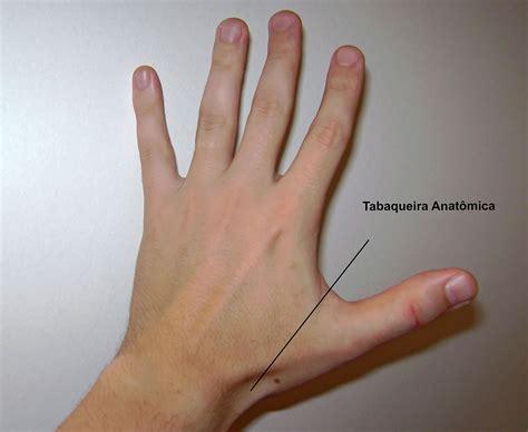 gabbia toracica sporgente tabacchiera anatomica