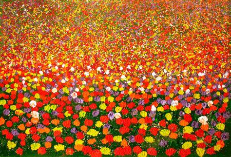 immagini prato fiorito realismo materico vittorio ferrarini