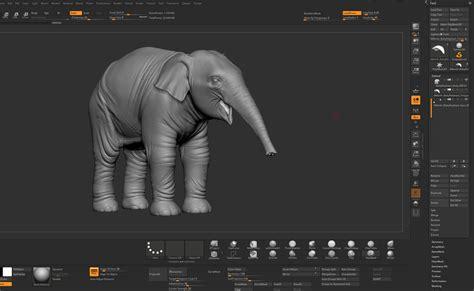 zbrush elephant tutorial pixologic zbrush blog 187 elephant in the room