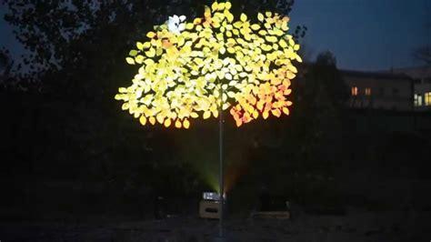 hologram tree hologram tree