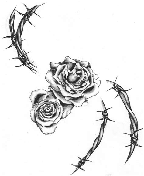rose and barbed wire tattoo barbed wire www imgkid the image kid