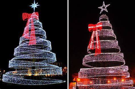lighted outdoor trees outdoor lit trees rainforest islands ferry
