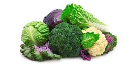 cucinare i cavoli cavoli e broccoli le 10 varieta principali e le