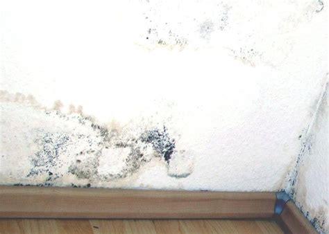 infiltrazioni soffitto infiltrazioni d acqua in casa risolviamo i motivi di