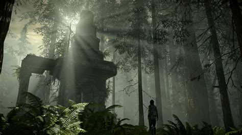 The Shadow Of The shadow of the colossus remake is out in february see new