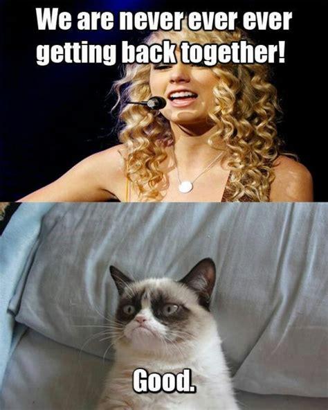 Grumpy Cat Funniest Memes - taylor swift and grumpy cat funny lyrics picture grumpy