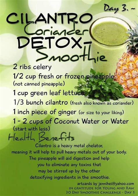 Cilantro Detox Tea Recipe by 17 Best Images About Detox On Lemon Detox