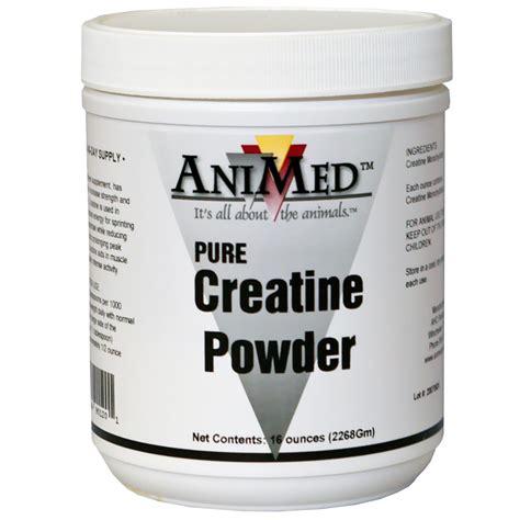creatine 6 months animed creatine powder 16 oz