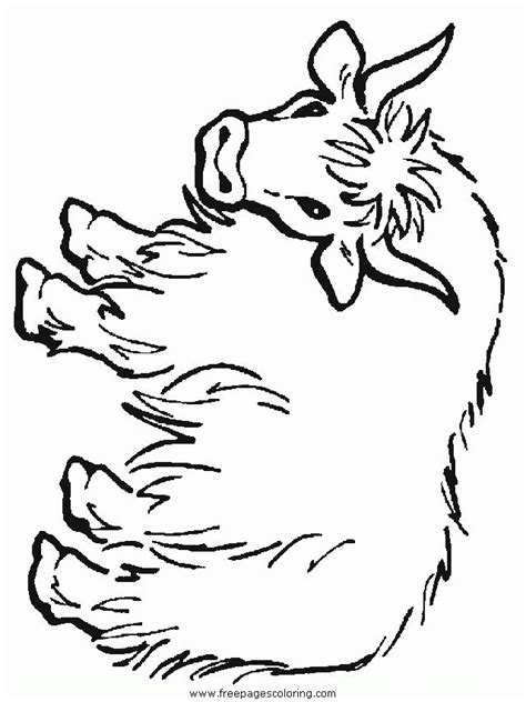 free coloring pages yak yak coloring pages coloring home