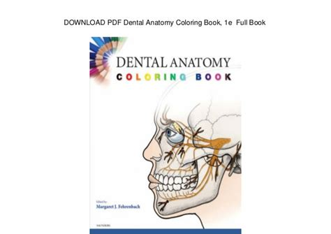 dental anatomy coloring book saunders 99 coloring book physiology free