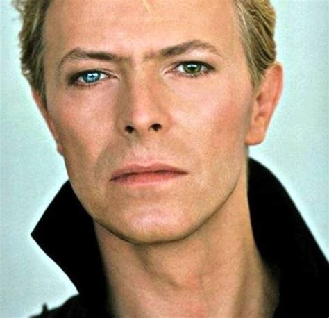 david bowie eye color 17 best images about mesmer eye zing on ralph