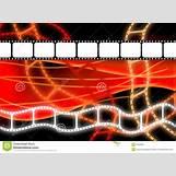Film Strip Black Background | 1300 x 957 jpeg 164kB