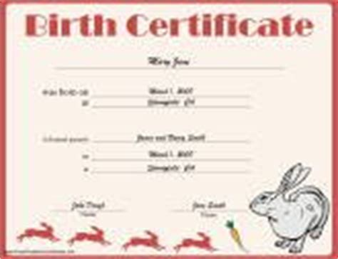 rabbit birth certificate template free rabbit birth certificates