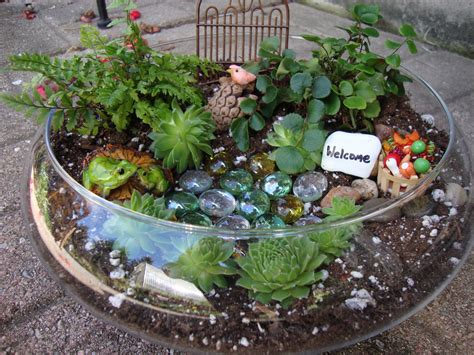 Dijamin Garden Mini Plant Mini Garden brendens garden center miniature terrarium gardens