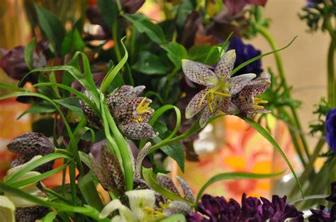 bloemen winkel starten hardy farm vendor dutch bloemen winkel maine barn