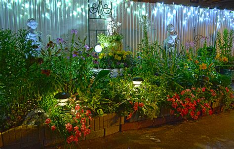 flower bed lights get a nighttime view of garden that packs many flowers in