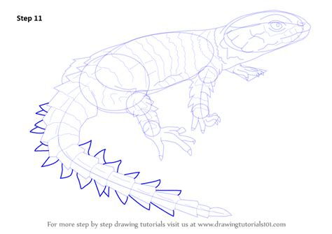 learn   draw  armadillo girdled lizard reptiles step  step drawing tutorials