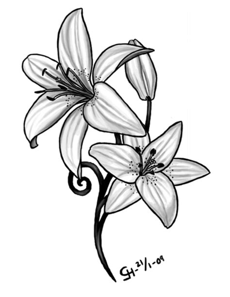 lilly tattoo designs meaning ideas images pictures