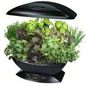 best indoor herb garden garden and beyond growing indoor herb garden