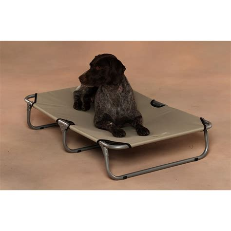 dog cot bed sporting dog solutions folding dog cot 162664 kennels
