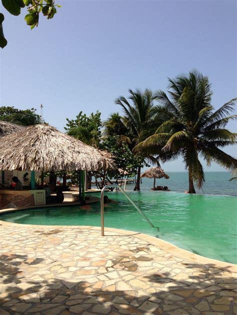 jaguar resort belize jaguar reef lodge pool belize belize loved it