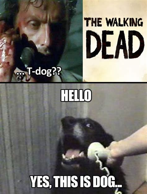 yes this is dog the walking dead know your meme