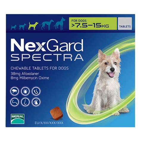 nexgard chewables for dogs nexgard spectra for dogs nexgard spectra chewable tablets for dogs budgetpetworld