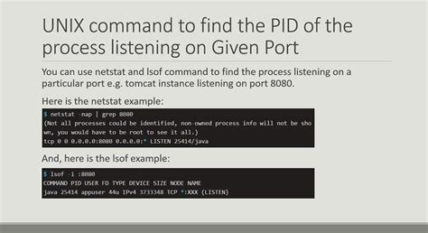 tutorial netstat linux how to find pid of process listening on a port in linux