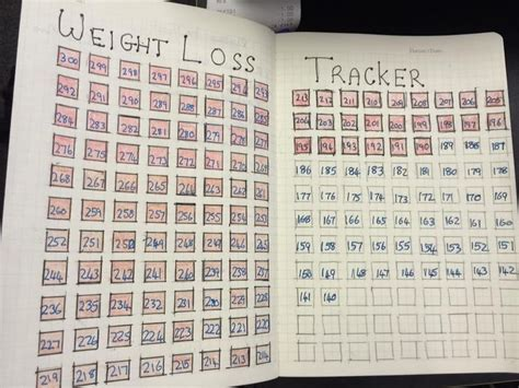 weight loss journal ideas health weight loss tracker bujo weight