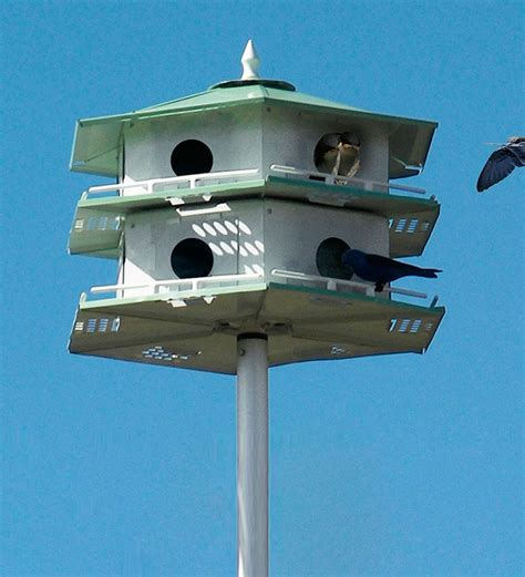 buy purple martin house 12 room martin house pole set collection accessories