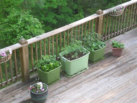 Back Porch Garden Rubbermaid Container Garden Porch Vegetable Garden