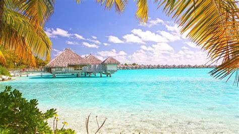 tropical beach bora bora polynesia desktop wallpaper wallpaperscom