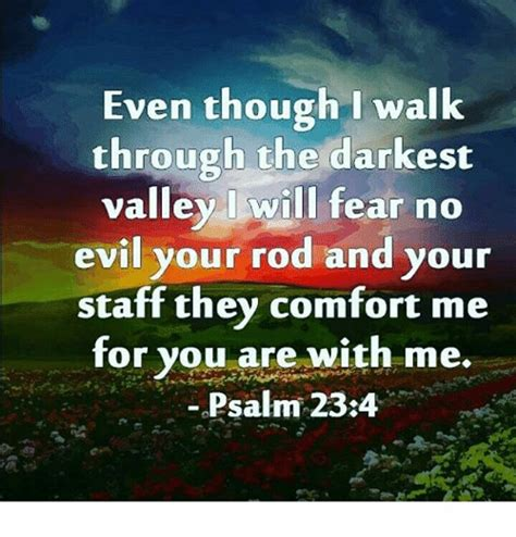 your rod and your staff they comfort me meaning even though i walk through the darkest valley will fear no