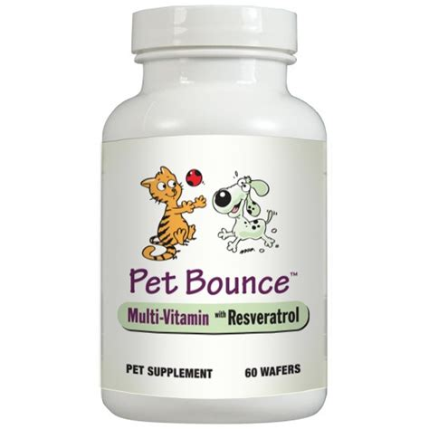 best vitamins for puppies all about vitamins for dogs usage best supplements to consider buying petpact